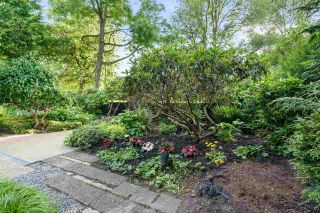 Photo 35: 6350 ALMA Street in Vancouver: Southlands House for sale (Vancouver West)  : MLS®# R2464889