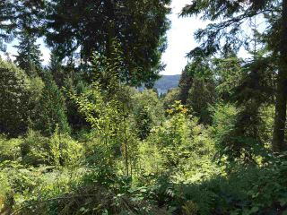 Photo 33: Lot 1 MARINE Drive in Granthams Landing: Gibsons & Area Land for sale (Sunshine Coast)  : MLS®# R2535798