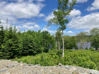 Photo 10: Lot 28 Anderson Drive in Sherbrooke: 303-Guysborough County Vacant Land for sale (Highland Region)  : MLS®# 202115629