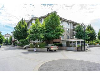 """Photo 1: C113 8929 202 Street in Langley: Walnut Grove Condo for sale in """"The Grove"""" : MLS®# R2189548"""