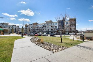 Photo 31: 1411 302 Skyview Ranch Drive NE in Calgary: Skyview Ranch Apartment for sale : MLS®# A1102866