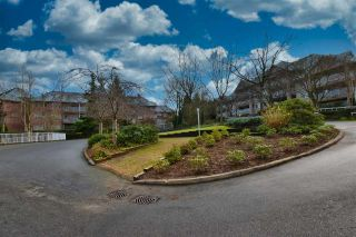 """Photo 14: 402 15150 29A Avenue in Surrey: King George Corridor Condo for sale in """"The Sands II"""" (South Surrey White Rock)  : MLS®# R2523039"""