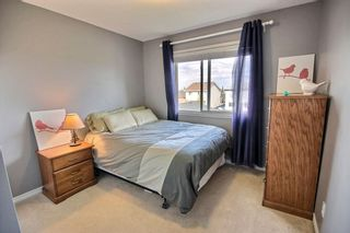 Photo 12: 315 BRINTNELL Boulevard in Edmonton: Zone 03 House for sale : MLS®# E4237475