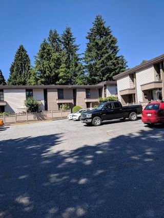 """Photo 1: 35 13795 102 Avenue in Surrey: Whalley Townhouse for sale in """"MEADOWS"""" (North Surrey)  : MLS®# R2280952"""