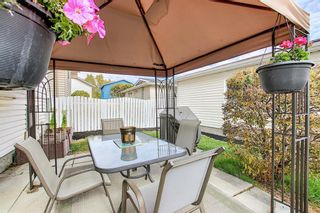 Photo 13: 305 Martinwood Place NE in Calgary: Martindale Detached for sale : MLS®# A1038589