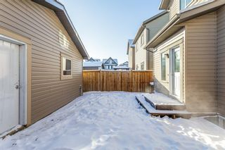 Photo 20: 25 Copperpond Rise SE in Calgary: Copperfield Detached for sale : MLS®# A1067896