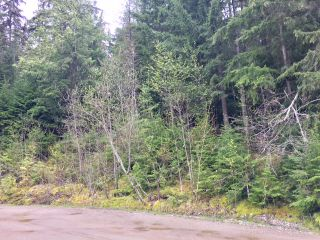 Photo 25: 3,4,6 Armstrong Road in Eagle Bay: Vacant Land for sale : MLS®# 10133907
