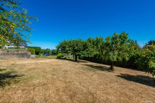 Photo 43: 279 S Murphy St in : CR Campbell River Central House for sale (Campbell River)  : MLS®# 884939