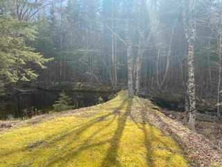 Photo 29: 8664 Highway 7 in Sherbrooke: 303-Guysborough County Residential for sale (Highland Region)  : MLS®# 202111497