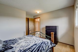 Photo 26: 604 High View Gate NW: High River Detached for sale : MLS®# A1071026