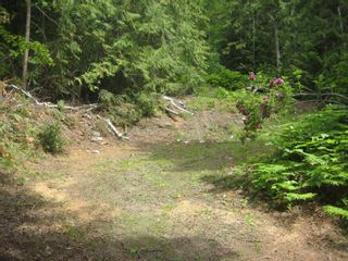 Photo 3: 12 Stampede Trail in Anglemont: Land Only for sale : MLS®# 10031134