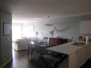"""Photo 3: 502 22230 NORTH Avenue in Maple Ridge: West Central Condo for sale in """"SOUTHRIDGE TERRACE"""" : MLS®# R2314489"""