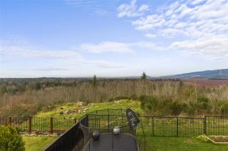 Photo 19: 22801 NELSON Court in Maple Ridge: Silver Valley House for sale : MLS®# R2552375