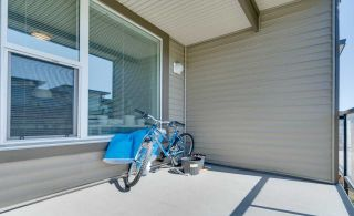 """Photo 30: 315 33538 MARSHALL Road in Abbotsford: Central Abbotsford Condo for sale in """"The Crossing"""" : MLS®# R2569081"""
