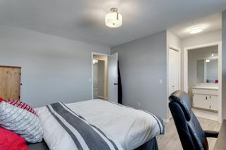 Photo 25: 3812 49 Street NE in Calgary: Whitehorn Detached for sale : MLS®# A1054455