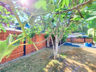 Photo 23: 3630 Maitland St in : PA Port Alberni House for sale (Port Alberni)  : MLS®# 883156