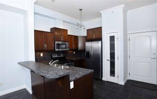Photo 7: 407 10121 80 Avenue in Edmonton: Zone 17 Condo for sale : MLS®# E4258416