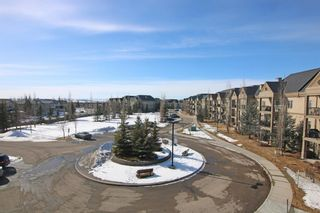 Photo 23: 302 52 CRANFIELD Link SE in Calgary: Cranston Apartment for sale : MLS®# A1074449