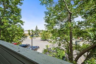 Photo 20: 3312 80 Glamis Drive SW in Calgary: Glamorgan Apartment for sale : MLS®# A1141828