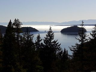 Photo 2: Lot 2 Bold Point Rd in : Isl Quadra Island Land for sale (Islands)  : MLS®# 860487