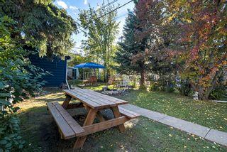 Photo 14: 9659 76 Avenue in Edmonton: Zone 17 House for sale : MLS®# E4263878