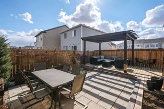 Photo 36: 151 Windford Rise SW: Airdrie Detached for sale : MLS®# A1096782