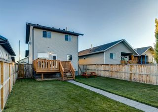 Photo 46: 103 DOHERTY Close: Red Deer Detached for sale : MLS®# A1147835