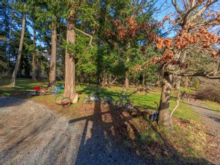 Photo 39: 7 Pirates Lane in : Isl Protection Island House for sale (Islands)  : MLS®# 866239
