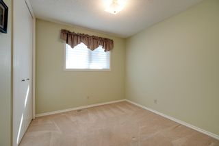 Photo 19: 101 WOODBINE Road: Sherwood Park House for sale : MLS®# E4253268