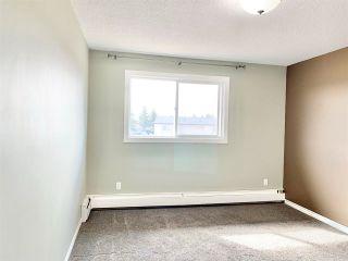 Photo 15: 324 15105 121 Street in Edmonton: Zone 27 Condo for sale : MLS®# E4239504