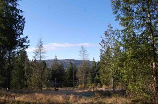 Photo 5: 9850 LINDSAY Terrace in Mission: Mission BC Land for sale : MLS®# R2331849