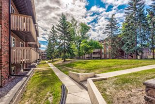 Photo 33: 432 11620 Elbow Drive SW in Calgary: Canyon Meadows Apartment for sale : MLS®# A1136729