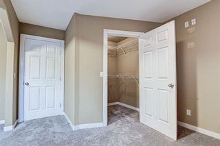 Photo 39: 286 Cranberry Close SE in Calgary: Cranston Detached for sale : MLS®# A1143993