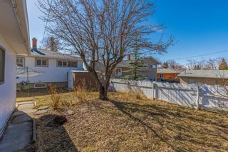 Photo 25: 127 Ferncliff Crescent SE in Calgary: Fairview Detached for sale : MLS®# A1088443