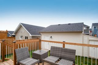 Photo 37: 317 South Point Green SW: Airdrie Detached for sale : MLS®# A1112953