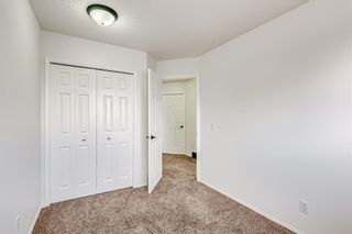 Photo 24: 18 Erin Meadow Close SE in Calgary: Erin Woods Detached for sale : MLS®# A1143099