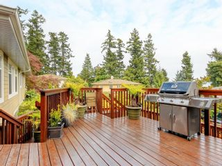 Photo 41:  in : SE Arbutus House for sale (Saanich East)  : MLS®# 887353