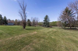 Photo 6: 1140 50242 RGE RD 244 A: Rural Leduc County House for sale : MLS®# E4244455