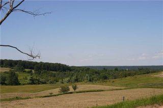 Photo 12: 568265 9 Sdrd in Mulmur: Rural Mulmur House (Bungalow) for sale : MLS®# X3900081