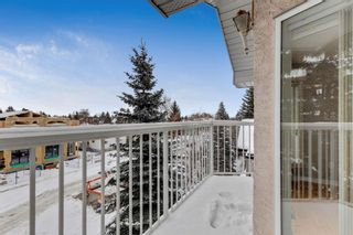 Photo 14: 302 215 17 Avenue NE in Calgary: Tuxedo Park Apartment for sale : MLS®# A1071484