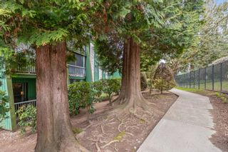 Photo 17: 102 3901 CARRIGAN Court in Burnaby: Government Road Condo for sale (Burnaby North)  : MLS®# R2547822