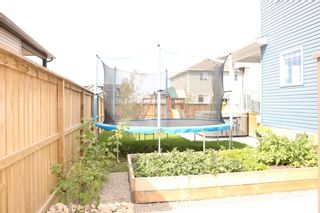 Photo 8: 6 Viceroy Crescent: Olds Detached for sale : MLS®# A1144521