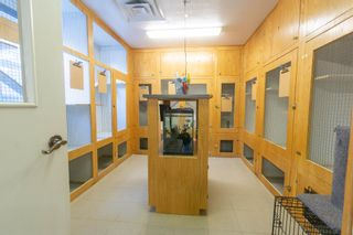 Photo 10: 10301 Highway 201 in Meadowvale: 400-Annapolis County Commercial  (Annapolis Valley)  : MLS®# 202106043