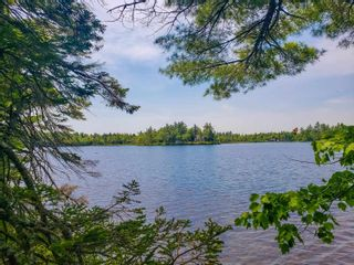 Photo 2: Lot 101 Dorey Mills Road in Clearland: 405-Lunenburg County Vacant Land for sale (South Shore)  : MLS®# 202119645