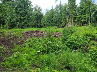 Photo 19: 1395 Taylor Road, in Sorrento: Vacant Land for sale : MLS®# 10229703
