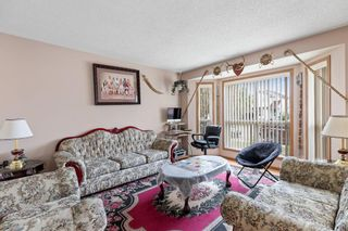 Photo 10: 249 martindale Boulevard NE in Calgary: Martindale Detached for sale : MLS®# A1116896