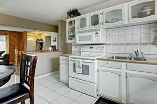 Photo 10: 3303 39 Street SE in Calgary: Dover Detached for sale : MLS®# A1084861