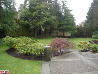 Photo 9: 13267 21ST Avenue in Surrey: Elgin Chantrell House for sale (South Surrey White Rock)  : MLS®# F1101224