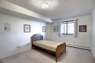 Photo 12: 505 9800 Horton Road SW in Calgary: Haysboro Apartment for sale : MLS®# A1060584