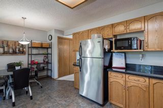 Photo 10: 28 Highcastle Crescent in Winnipeg: River Park South Residential for sale (2F)  : MLS®# 202124104